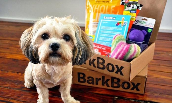 groupon barkbox deal