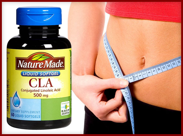 Conjugated Linoleic Acid (CLA) May Need Help in Weight Loss Efforts