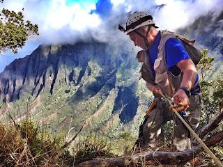 https://bio-orbis.blogspot.com.br/2013/12/a-corrida-para-salvar-as-plantas-mais.html