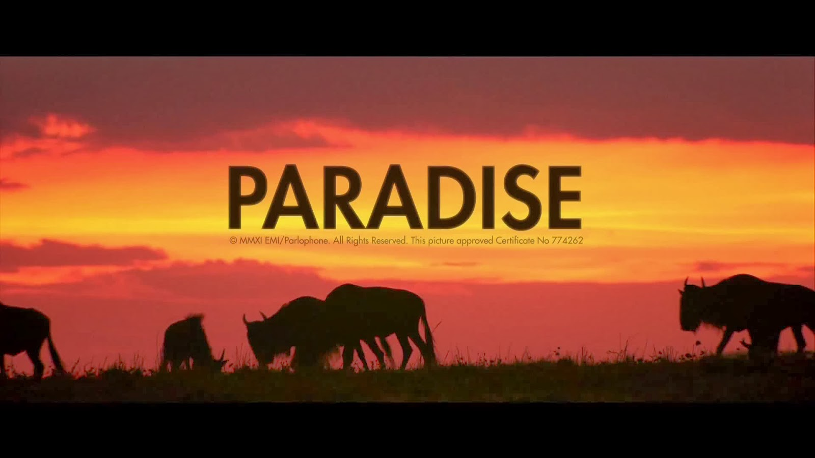 Coldplay paradise wallpapers screenshots pictures in 1080hd coldplay paradise voltagebd Gallery