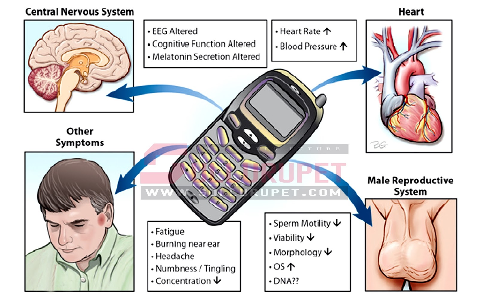 mobile phone influence people s life Mobile phone adoption, its influence on  mobile phone is partly responsible for youth's  positively use mobile phone to impact social life of the people.