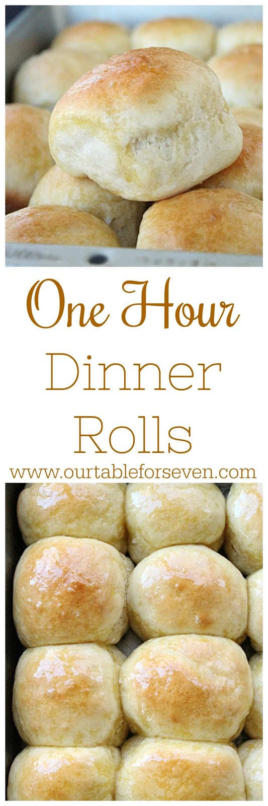 One Hour Dinner Rolls from Table for Seven