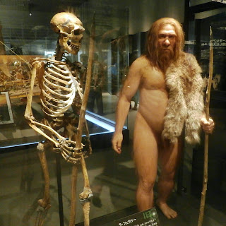 What is the source of the Creationist myth that many doctoral dissertations were based upon Piltdown Man?
