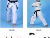 5 Jenis Teknik Dasar Taekwondo Beserta Gambar dan Video