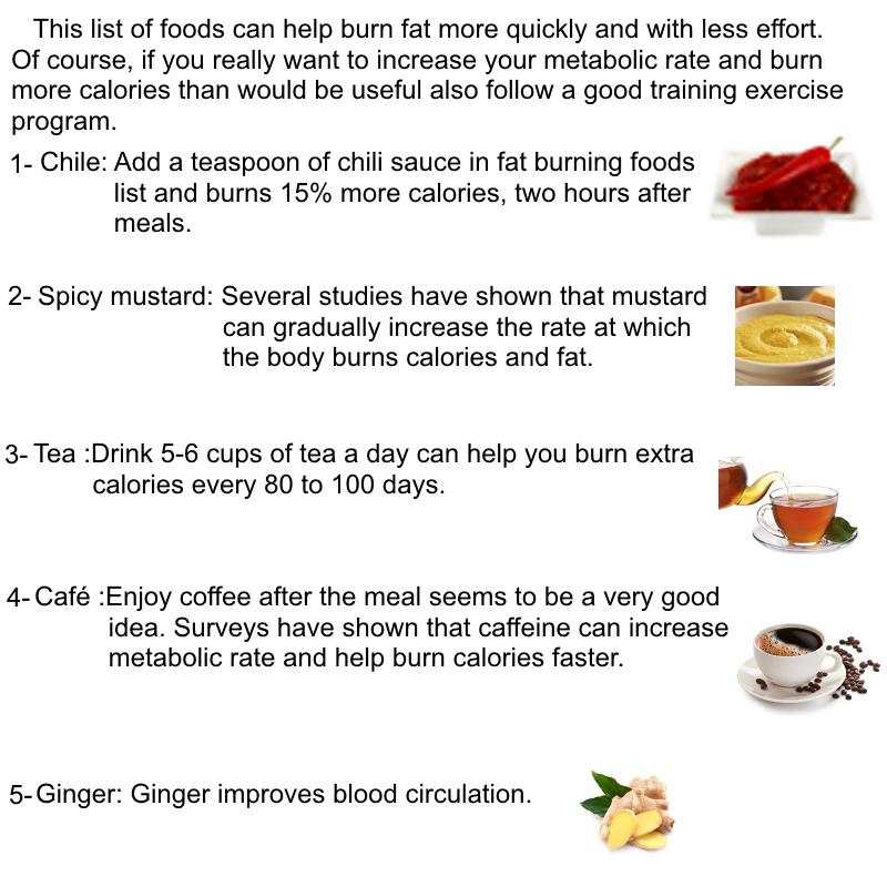 Fat burning ninjas meal plan picture 6