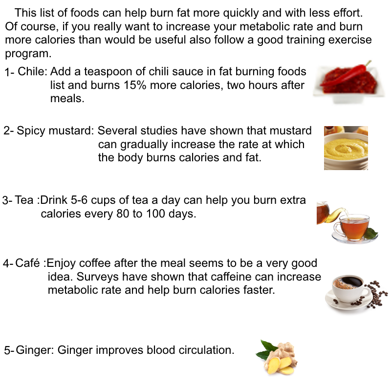 Fat Burning Foods List That You Really Need Top4you