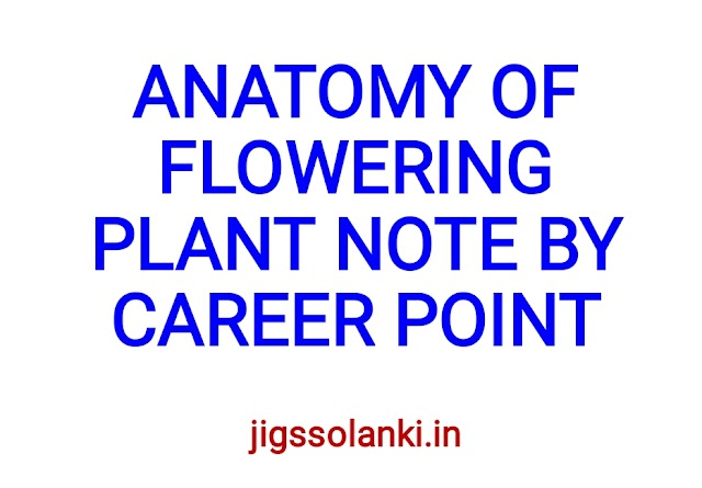 ANATOMY OF FLOWERING PLANT NOTE BY CAREER POINT