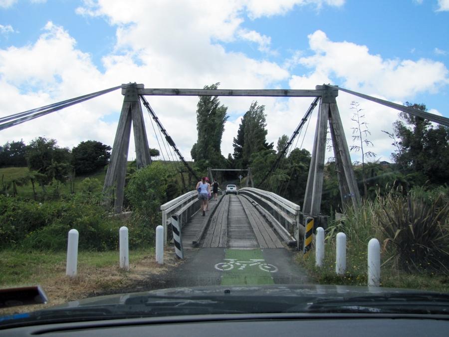 suspension-bridge-nz