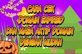 Cara cek Domain Expired dan masa aktif domain dengan mudah
