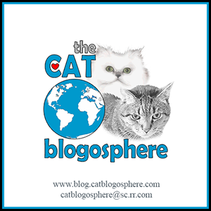 The Cat Blogosphere