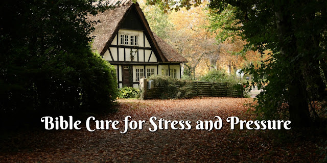 Dealing with Stress and Discouragement According to the Psalms