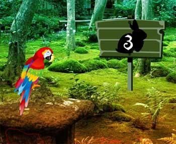 Juegos de Escape - Scarlet Macaw Forest Escape