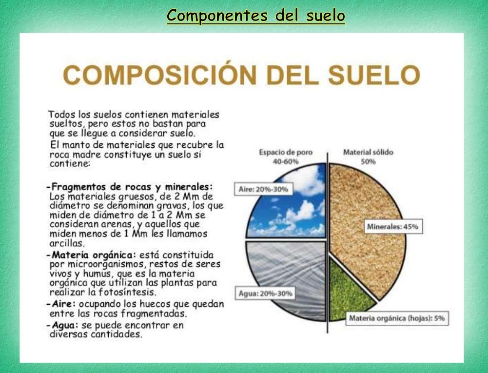 Formaci n profesional b sica de agro jardiner a y for Componentes quimicos del suelo