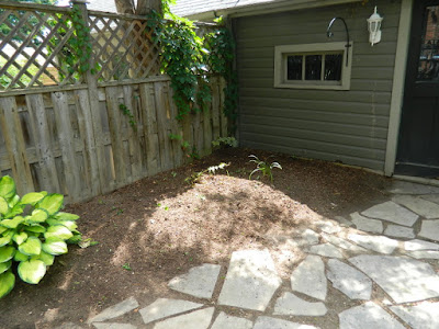 Toronto Leslieville Summer Backyard Garden Cleanup After by Paul Jung Gardening Services--a Toronto Organic Gardener