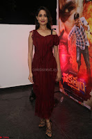 Pragya Jaiswal in Stunnign Deep neck Designer Maroon Dress at Nakshatram music launch ~ CelebesNext Celebrities Galleries 018.JPG