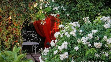 Jardines muy privados. Rosanna Castrini: il mio giardino-atelier