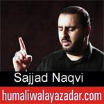 https://www.humaliwalyazadar.com/2018/08/sajjad-naqvi-nohay-2019.html
