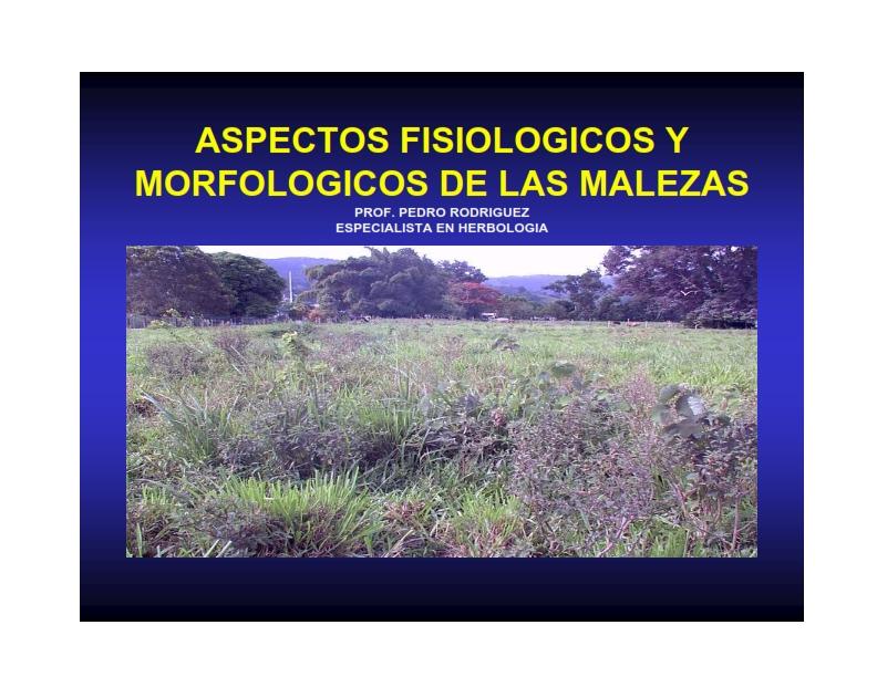 Aspectos Fisiológicos Y Morfológicos En Las Malezas