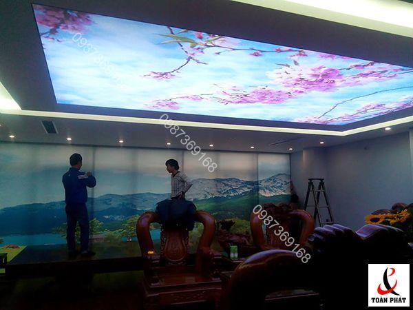 Hình ảnh mẫu thiết kế trần và tường xuyên sáng hoa đào và núi Phú Sỹ tại nhà anh Minh Tâm - giám đốc bê tông Việt Đức