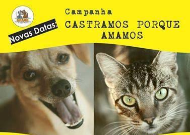 GPA mantém abertas em sua sede as inscrições  para a campanha de castração de cães e gatos do sábado 30/06