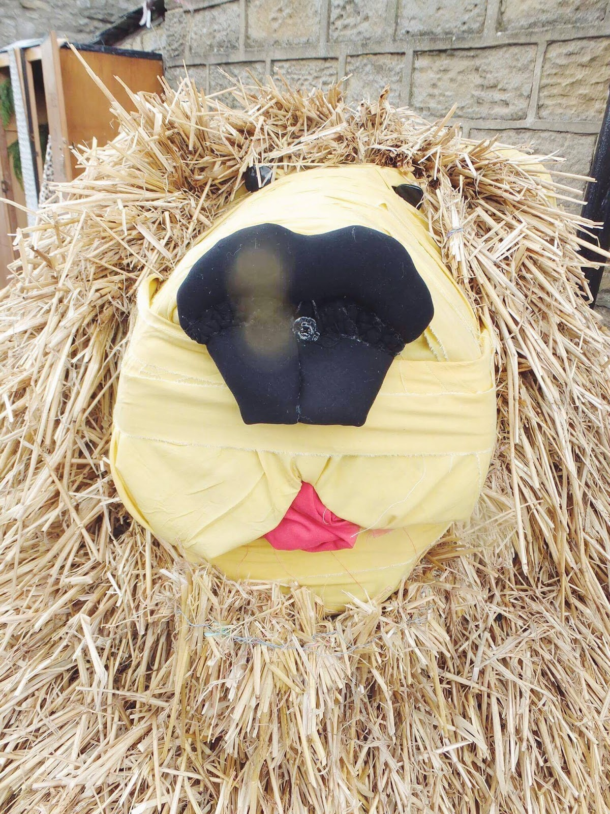 Kettlewell-Aslan-Scarecrow