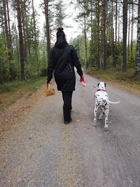 Koiran kanssa kävelemässä