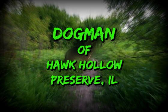 Dogman of Hawk Hollow Preserve, Illinois