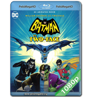 BATMAN VS. DOS CARAS (2017) FULL 1080P HD MKV ESPAÑOL LATINO