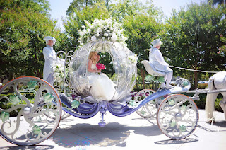 Perfect Cinderella Wedding Carriages and Horses