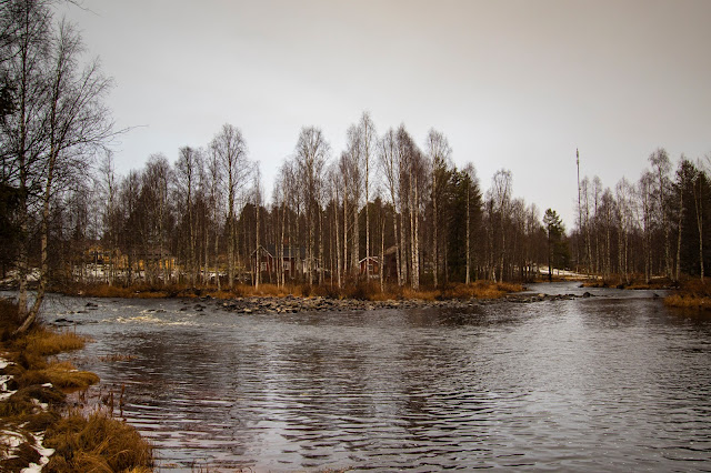 Fiume nei dintorni di Rovaniemi