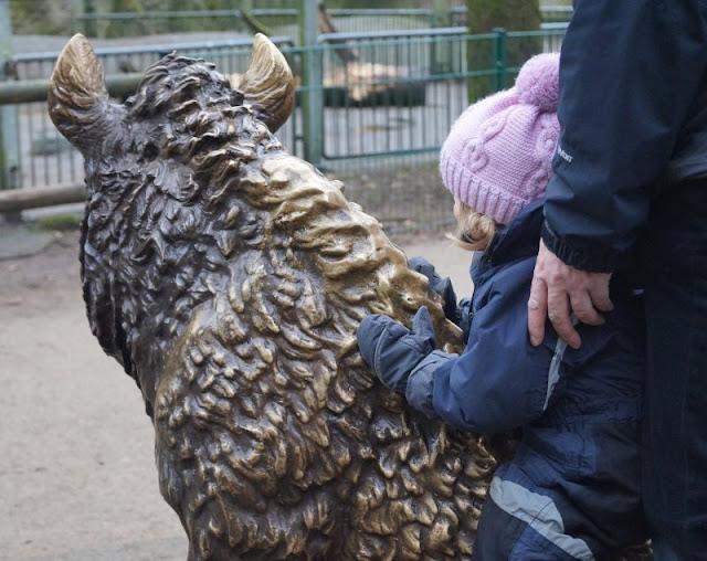 Tierpark Neumünster Eber Foto Kinder Familie Herbst Winter Frühjahr