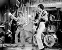 The Who - Dogs