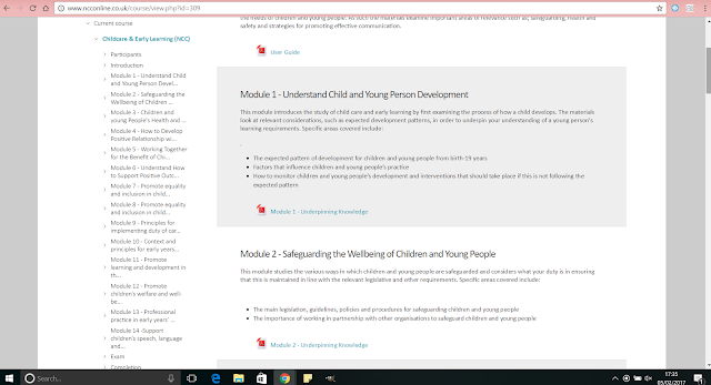 understanding safeguarding of children and young