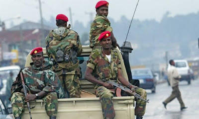 احتجاجات ضد ابى احمد, اطلاق نار, مدينة اثيوبيا, حصار منزل جوهر محمد, اجبار الحرس الشخصى, المغادرة,