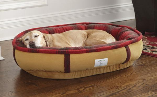 19 chiếc giường tuyệt vời dành cho thú cưng của bạn