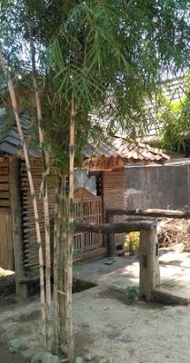 Lokasi-warung-kopi-bumbung