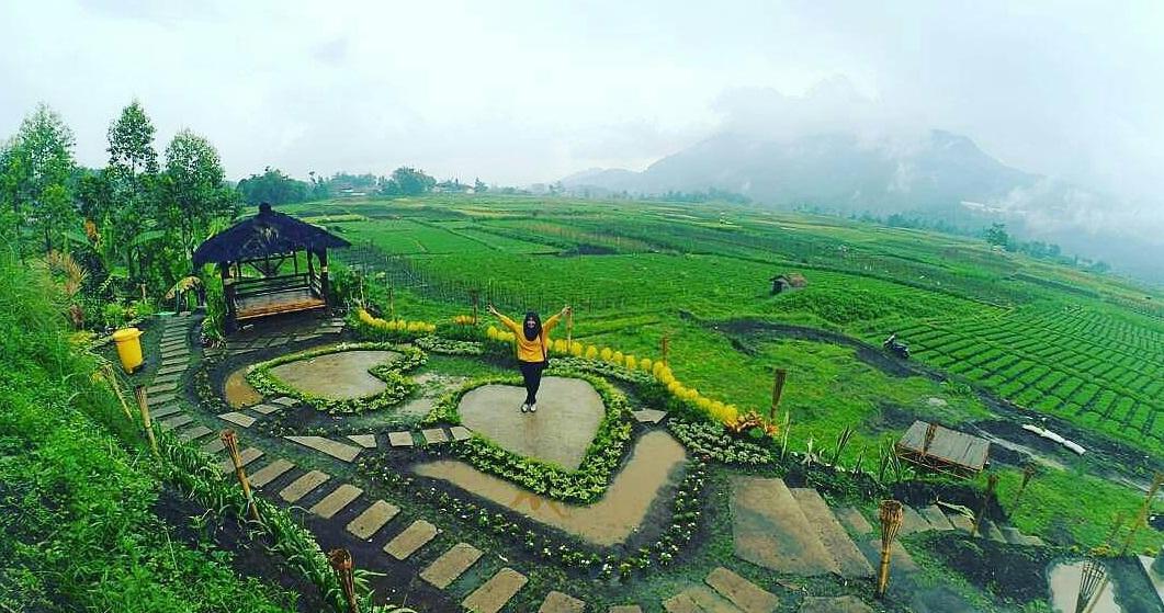 Lokasi Dan Rute Desa Wisata Pujon Kidul Malang Cafe Sawah Pujon Kidul