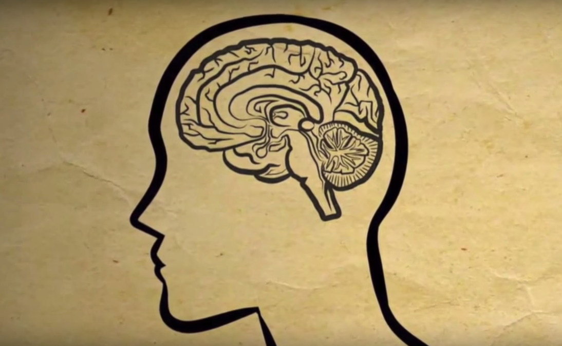 DMT and the Pineal Gland: A Sceptic's View