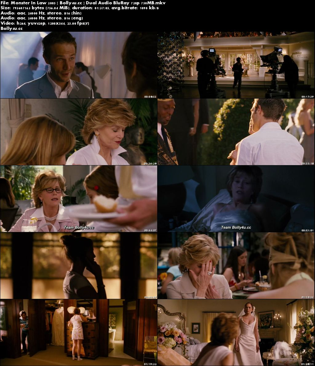 Monster In Law 2005 BluRay 300MB Hindi Dual Audio 480p Download