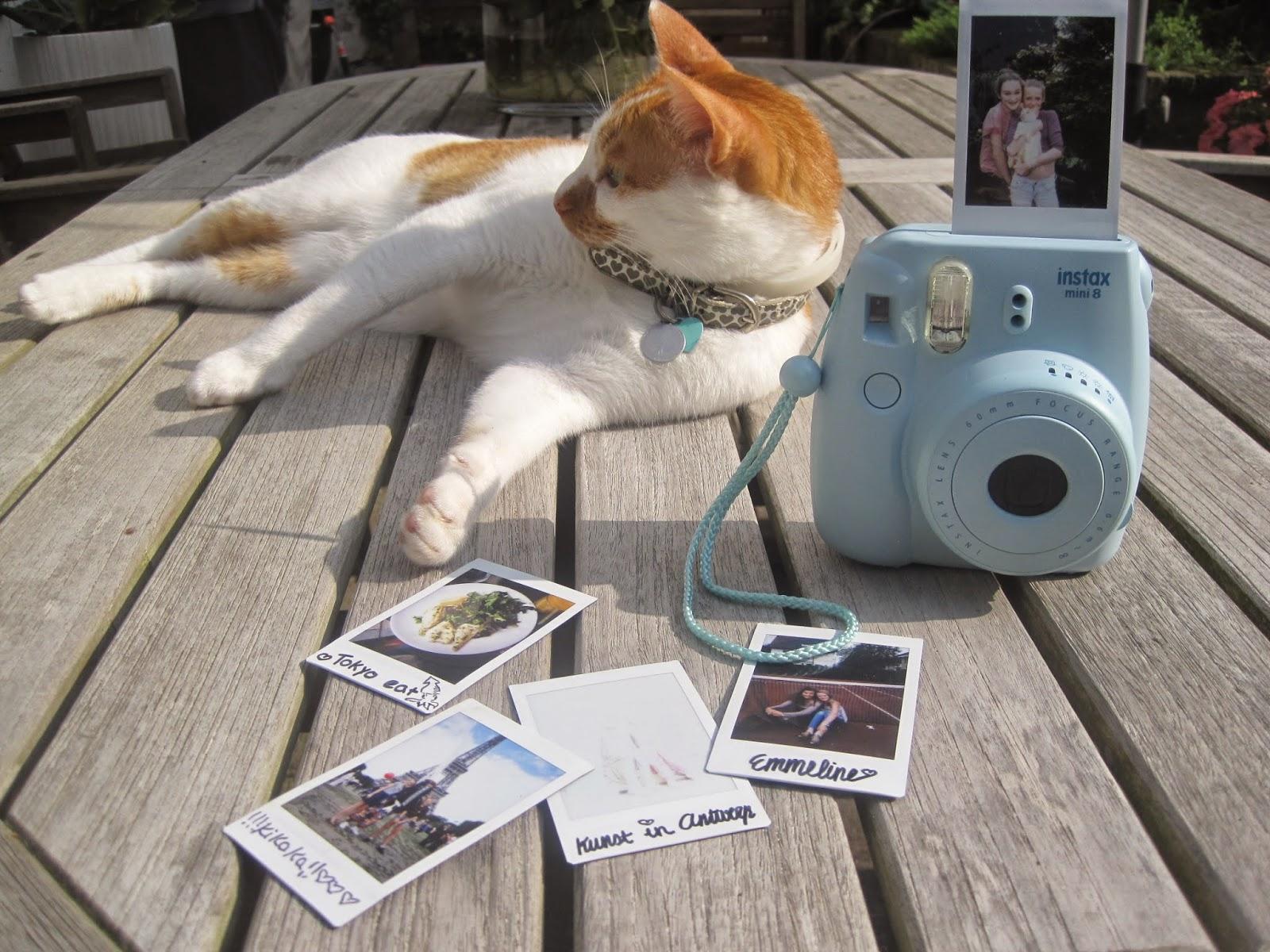 polaroid camera kleur blauw
