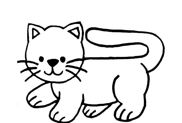 قطة للتلوين مميزة وجميلة
