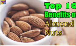 Health Benefits Of Almond of 2018