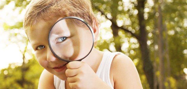Mejorar tu Desarrollo Web, Curiosidad