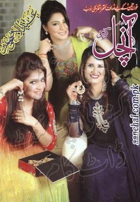 Aanchal Digest October 2013