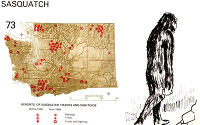 Sasquatch Sightings Washington