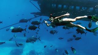 GT Point Snorkeling Nusa Penida Bali