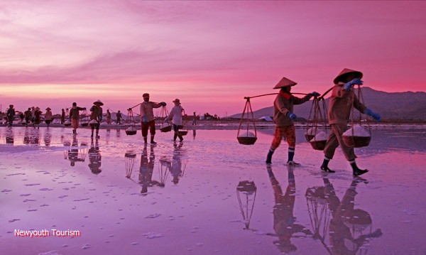 The salt fields near Van Phong Bay, Khanh Hoa province 3