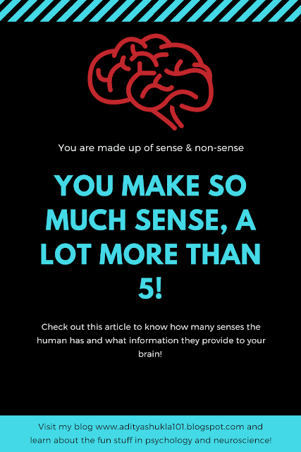 Humans have at least 10 senses