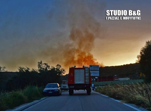 Πυρκαγιά στον Άγιο Δημήτριο (Μετόχι) του Δήμου Επιδαύρου (βίντεο)