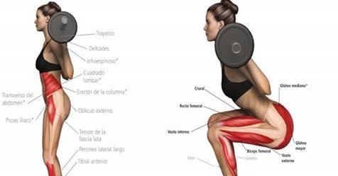 Aprende a aumentar los gl teos en casa con estos ejercicios f ciles mi mundo verde - Barras de ejercicio para casa ...